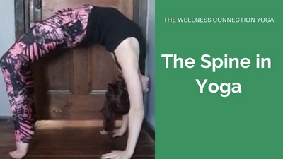 The Spine in Yoga