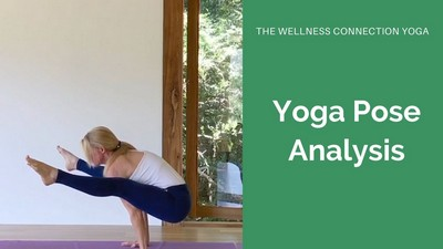 online yoga courses  wellness connection yoga